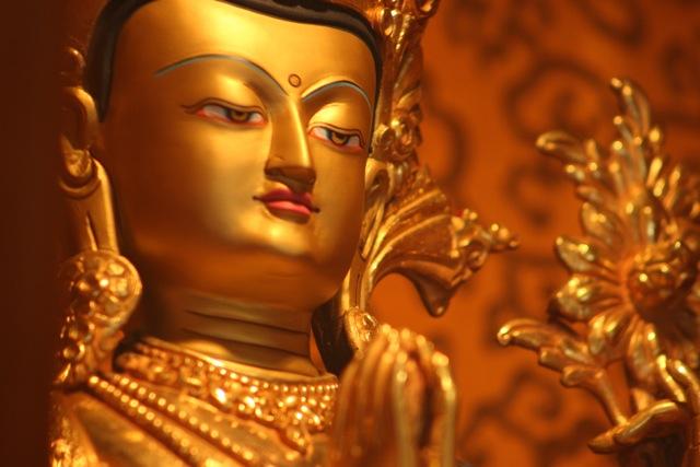 Taller Intensivo de Meditación Shamatha (Calma Mental) en la V región