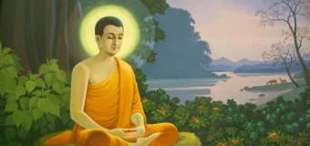 Interdependencia : La vision Budista del Karma, Causa y Efecto